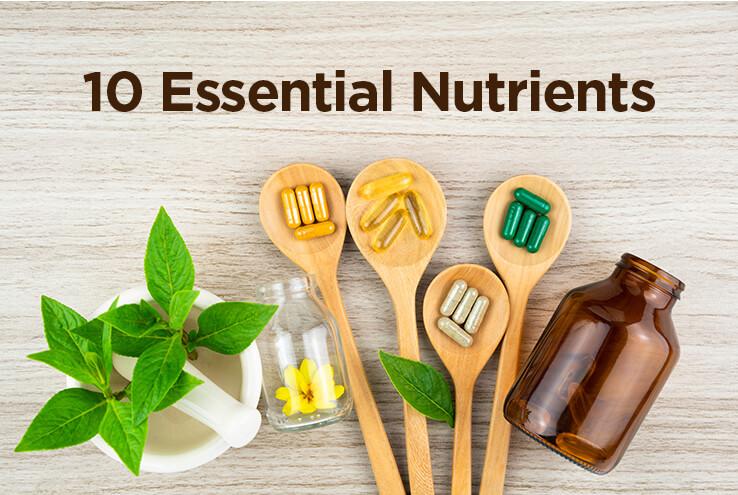 10 Essential Nutrients