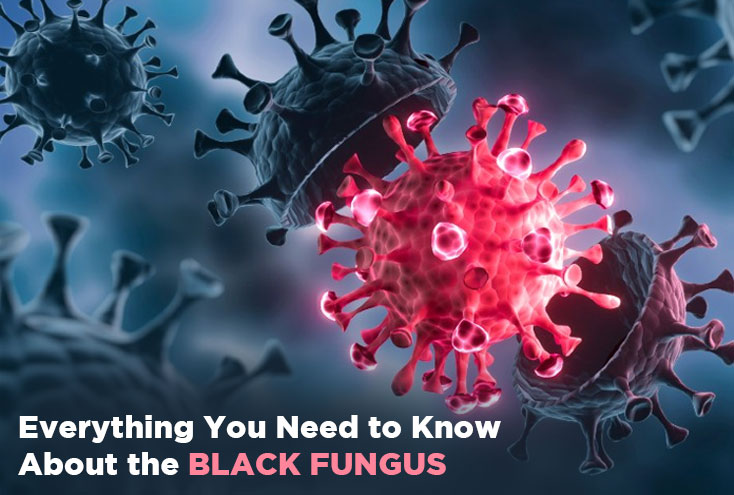 Everything you need to about the Black Fungus